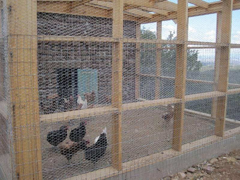 Gallery Center Of Chicken Wire