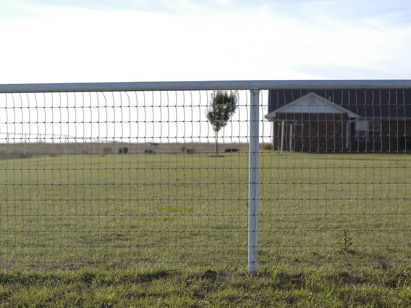 Gallery Center Of Field Fence