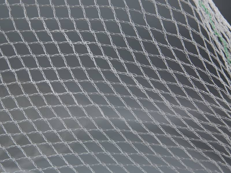 A Piece Of Transpa Plastic Mesh With Diamond Meshes On The Gray Background