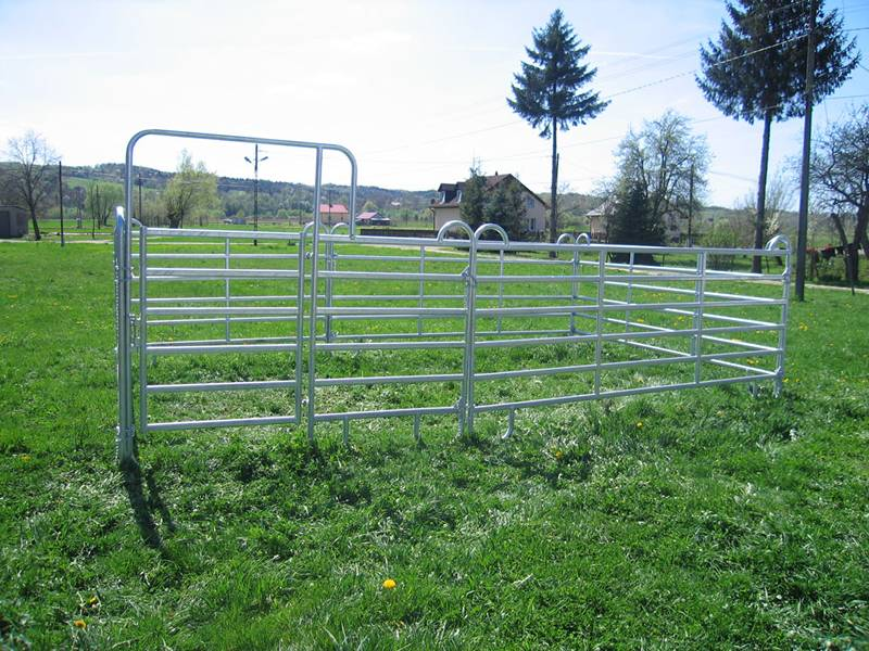 Several galvanizedpipe horse fence panels connected to form a fence.