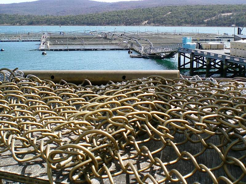 Copper alloy fish netting lays on the ground where next to a aquaculture base.