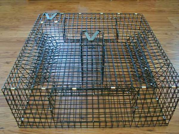 Lobster Trap Is Particular Design to Catch Lobster, Shrimp and Crab