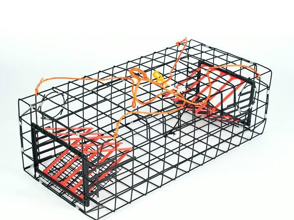 Lobster Trap Is Particular Design To Catch Lobster Shrimp