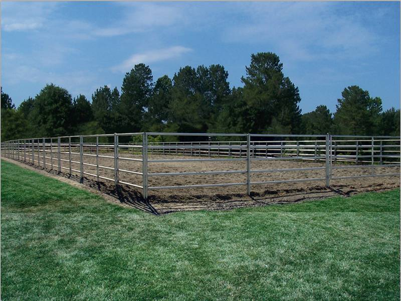 Pipe Horse Fence for Farm, Animal, Camping, Fairs, Arena Fencing