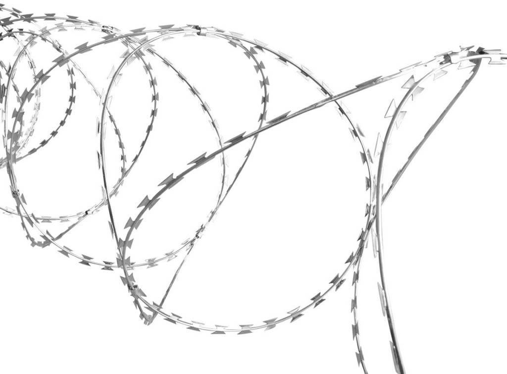 One part of concertina razor wire is shown, its adjacent loops are clipped by galvanized clips.