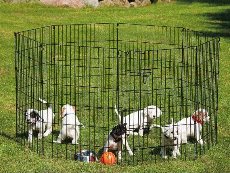 Several dogs are playing a ball in a dog run with eight sides.