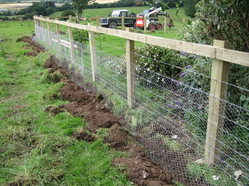 Chicken wire mesh fixed on the wooden frame and a trench created for deterring gophers.