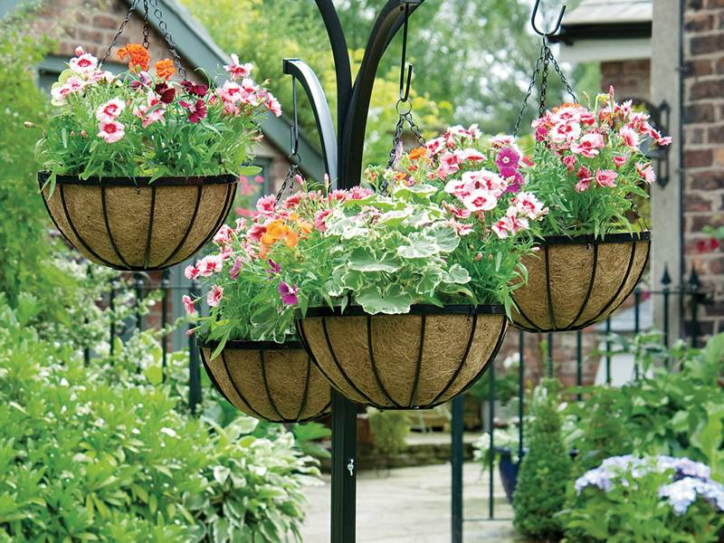 There are many flower baskets in the garden.
