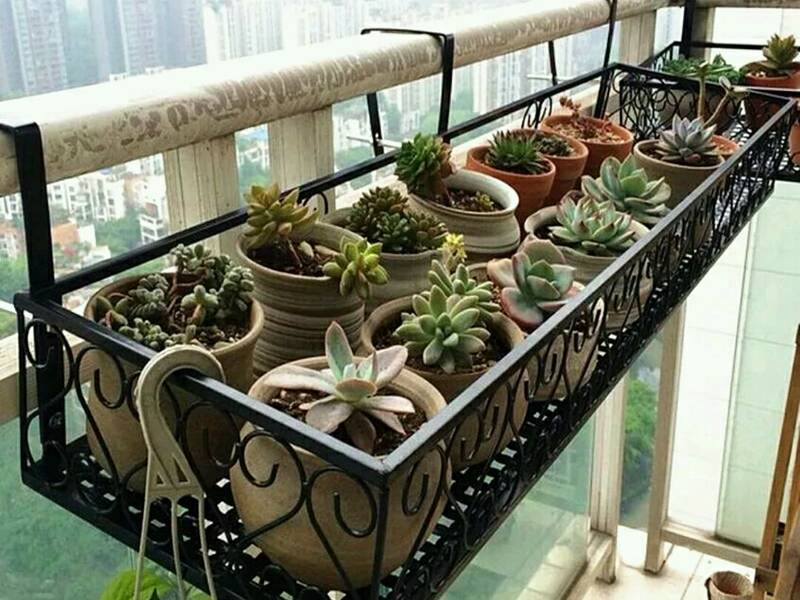 Walcoom & Flower Pot Rack for Garden Park House Balcony Yard Wall