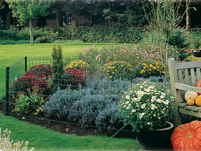 This Is A Beautiful Garden With Woven Garden Border Fence.