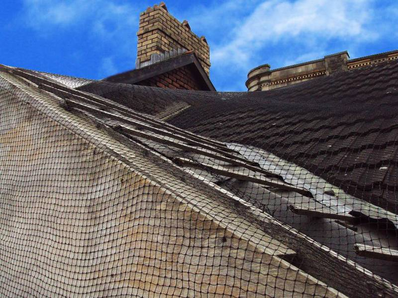 The black nylon bird netting is used to cover the roof.