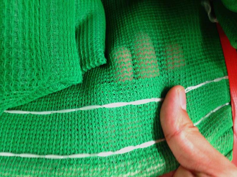 A detailed image of green personal safety net.