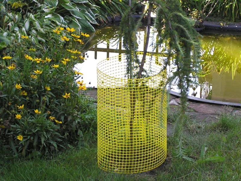 A plastic tree guard used to protect the tree beside the lake.