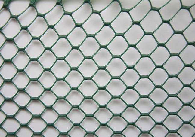 Plastic Poultry Netting for Breeding and Protecting Chicken and Duck