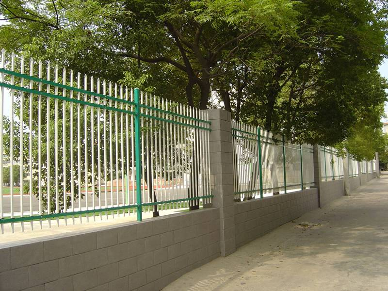 Wrought iron fence around school, and many lush tree in the vicinity of the fence.