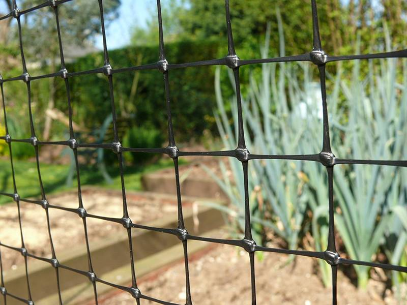 Extruded Anti Bird Netting For Orchard Vineyard And