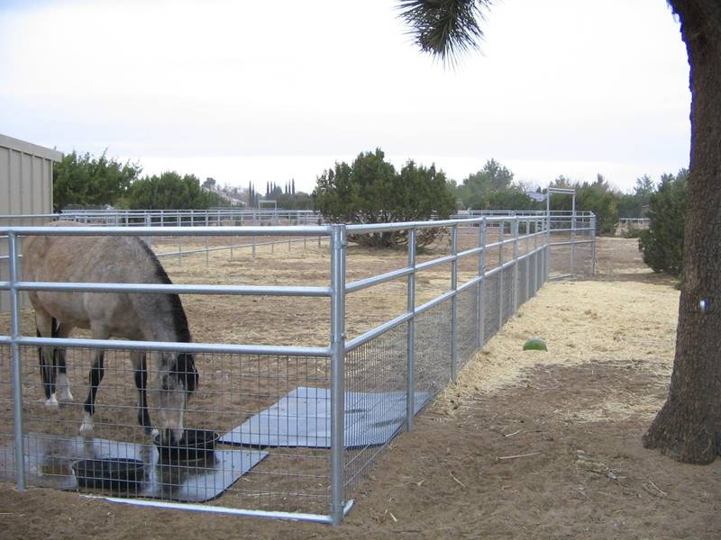 Welded wire horse fence for livestock farmland stall